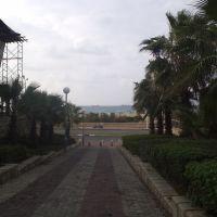 Ashdod 2011, Ашдод