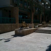 Golden lion, shopping center, Dimona, Димона