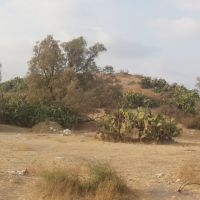 Iraq El Manshia(The Tel), Кирьят-Гат
