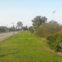 Timorim, Кирьят-Малахи