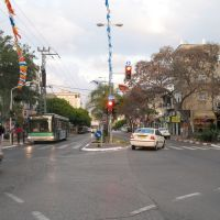 Weitzman st., Кфар Саба