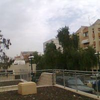 Moshe Sharet st. near the clinic, Кфар Саба