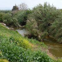 Sorek stinky stream, Гэдера