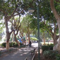 тенистый сквер в солнечных лучах, Натания