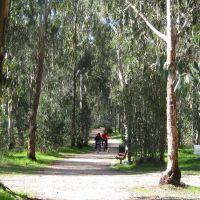 активный отдых на природе, Натания