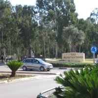 площадь университета, Натания