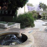 Weizmann institute park, Нэс-Циона