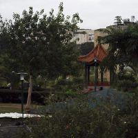 Ness Tziona Park, Нэс-Циона