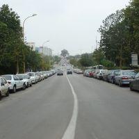 Bergman st., Park Mada (Science park), Rehovot, Нэс-Циона