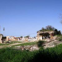 FIELDS OF OLD CITY RAMLA, Рамла