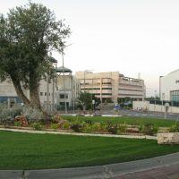 Roundabout Park Aphek, Рош-ха-Аин