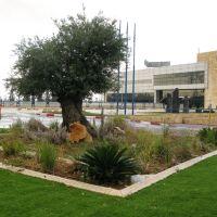 Ha-Amal Roundabout, Рош-ха-Аин