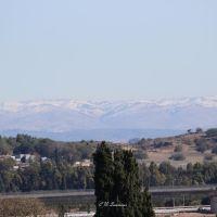 Judean Hills, Рэховот
