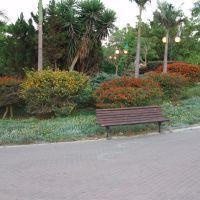 4 seasons park, Од-а Шарон