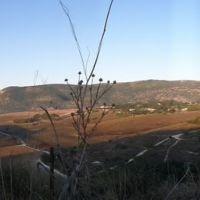 Carmel Mountain from Alecksander Zaid Statu, Qiriyat Tivon, Кирьят-Тивон