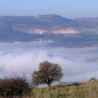 CLOUD TREE, Кирьят-Шмона