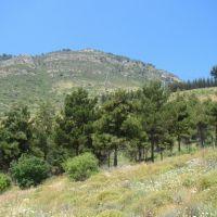 Israel. Ramot Naftali (Naphtali Ridge), Кирьят-Шмона
