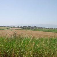 Kfar Ata & Usha, Кирьят-Ата