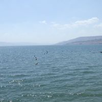 Israel. The Sea of Galilee (71297045), Мигдаль аЭмек