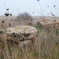 Dolmen stones, Gamla, Golan Heights, Кацрин