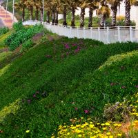 Green promenade, Бат-Ям