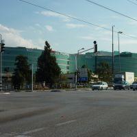 Израиль Герцилия, Герцелия