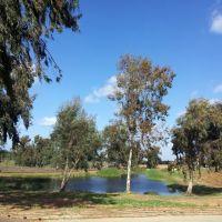 Herzlyia Park, Israel, Герцелия