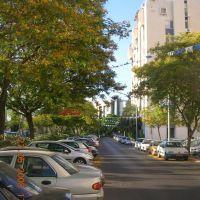 Rahavat Ilan street Givat Shmuel, Кирьят-Оно