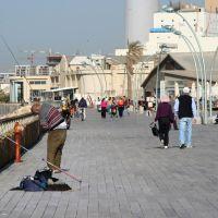 Old Port, Рамат-Хашарон