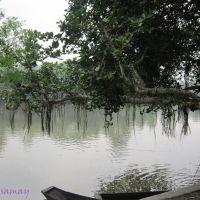 Sardarpara Kuleshwar. Playing with Boat., Байдьябати