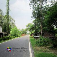 Usthi Netra Road, Netra, South 24 Parganas, W. B., Байдьябати