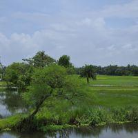Green Bengal Countryside, Байдьябати