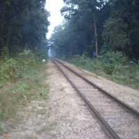Metre Gauge Track, near Mailani Junction, Балли