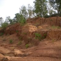 Red Soils of Birbhum, West Bengal, Банкура