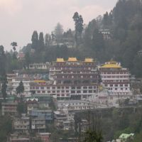 Darjeeling, Buddhist Monastery, Даржилинг