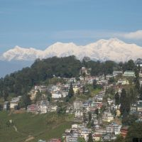 Cool Darjeeling Morning, Даржилинг
