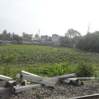 Sodpur, View from Train, Камархати