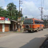 D L Roy Road, Krishna Nagar, Кришнанагар