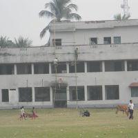 Sarat Shishu Niketan, Кришнанагар