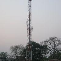 Saktinagar BSNL Tower, Кришнанагар