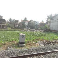 Agarpara, View from Train, Панихати