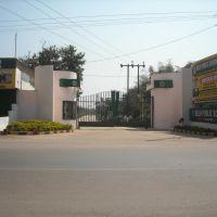 Delhi Public School, Биласпур