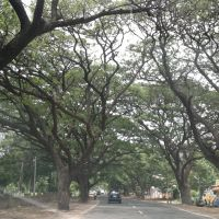 ,Hospet, Karnataka, India, Бияпур