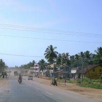 DSC01195  Harige, Бияпур