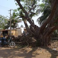 ══❍══ Kanakapur ══❍══ Karnataka ══❍══ India ══❍══, Давангер