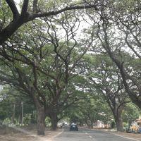 ,Hospet, Karnataka, India, Давангер