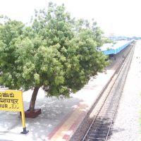 Raichur Railway Station., Раичур