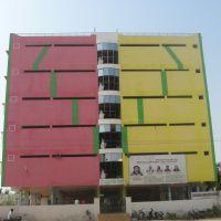 Ravindra Bharathi School Anantapur, Анантапур