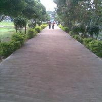 vivekananda park, Какинада