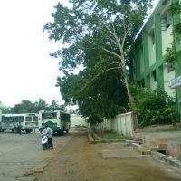 RTC Complex- Kakinada 8  (G.John Babu), Какинада